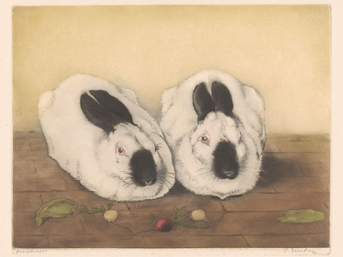 Vintage Rabbit Print-No.3345-Blank Note Card