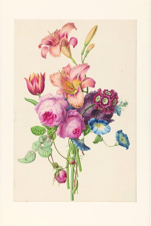 Botanical Printable print No 028