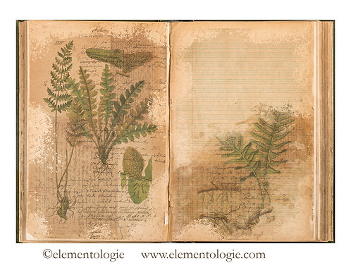 Botanical Junk Journal Double Page Sheet- No 123020-Digital Downl