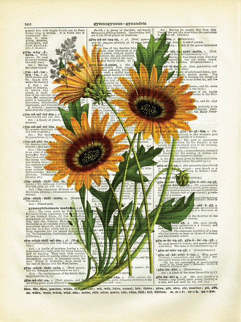 Sunflowers-Vintage Book Page Art Print No.03