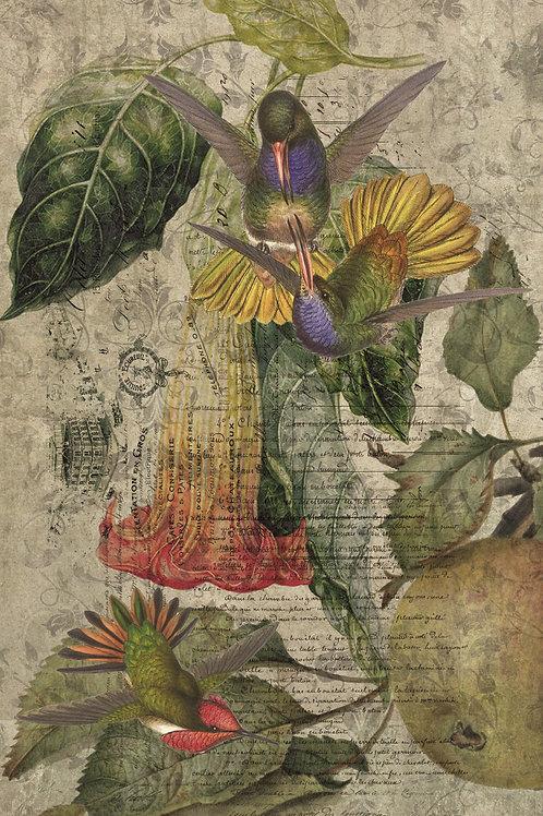Bird Collage Print-No.0718