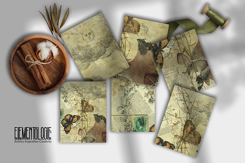 Nature Journal Cards No.55422 printable Junk Journal Cards, 3 x 4 Journal Cards,
