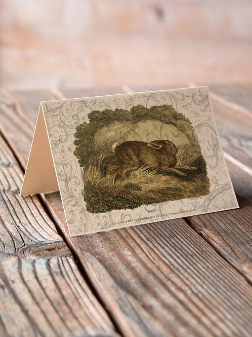 Vintage Hare Collage Print-No.66345-Blank Note Card