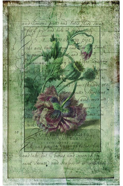Botanical Printable print No 030