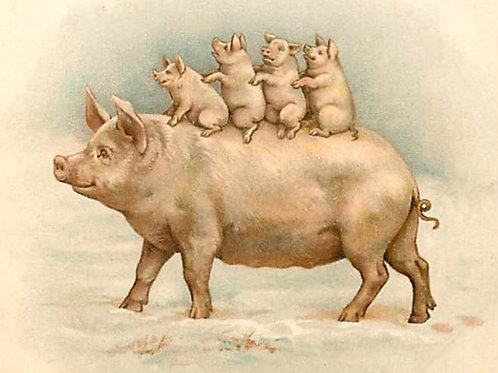 Vintage Pig & Piglets Print-No.8876-Blank Note Card