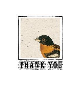 birds-8880-THANK YOU.jpg