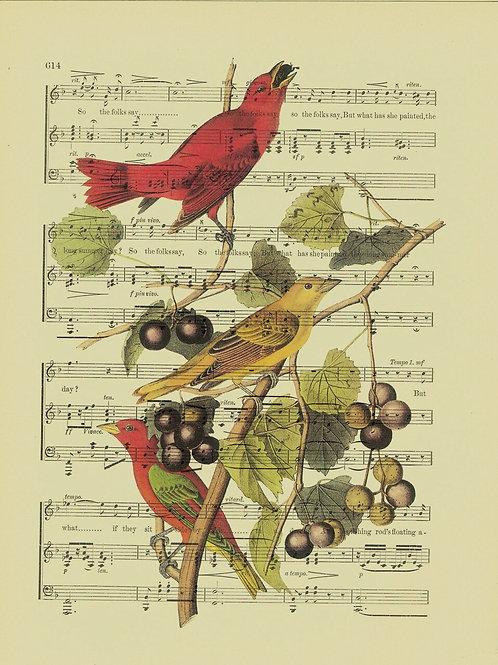 Bird-Vintage Book Page Art Print No. 16