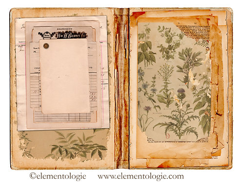 Botanical Junk Journal Double Page Sheet- No 123034-Digital Downl