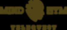 Logo Main Bwn.png