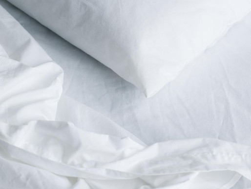 Everything You Need to Know to Get Rid of Bed Bugs