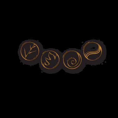 element TRANS MI SON.png
