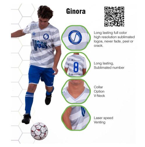 Ginora