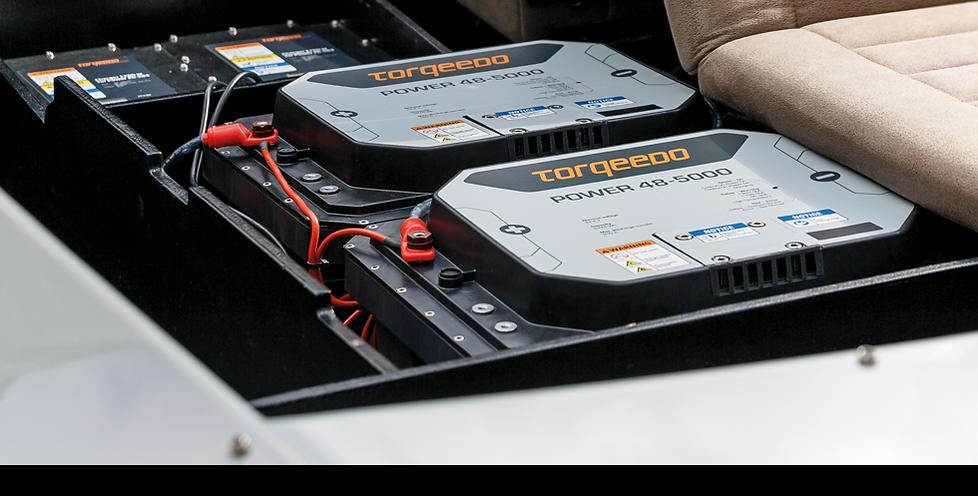 Batteries_back.png