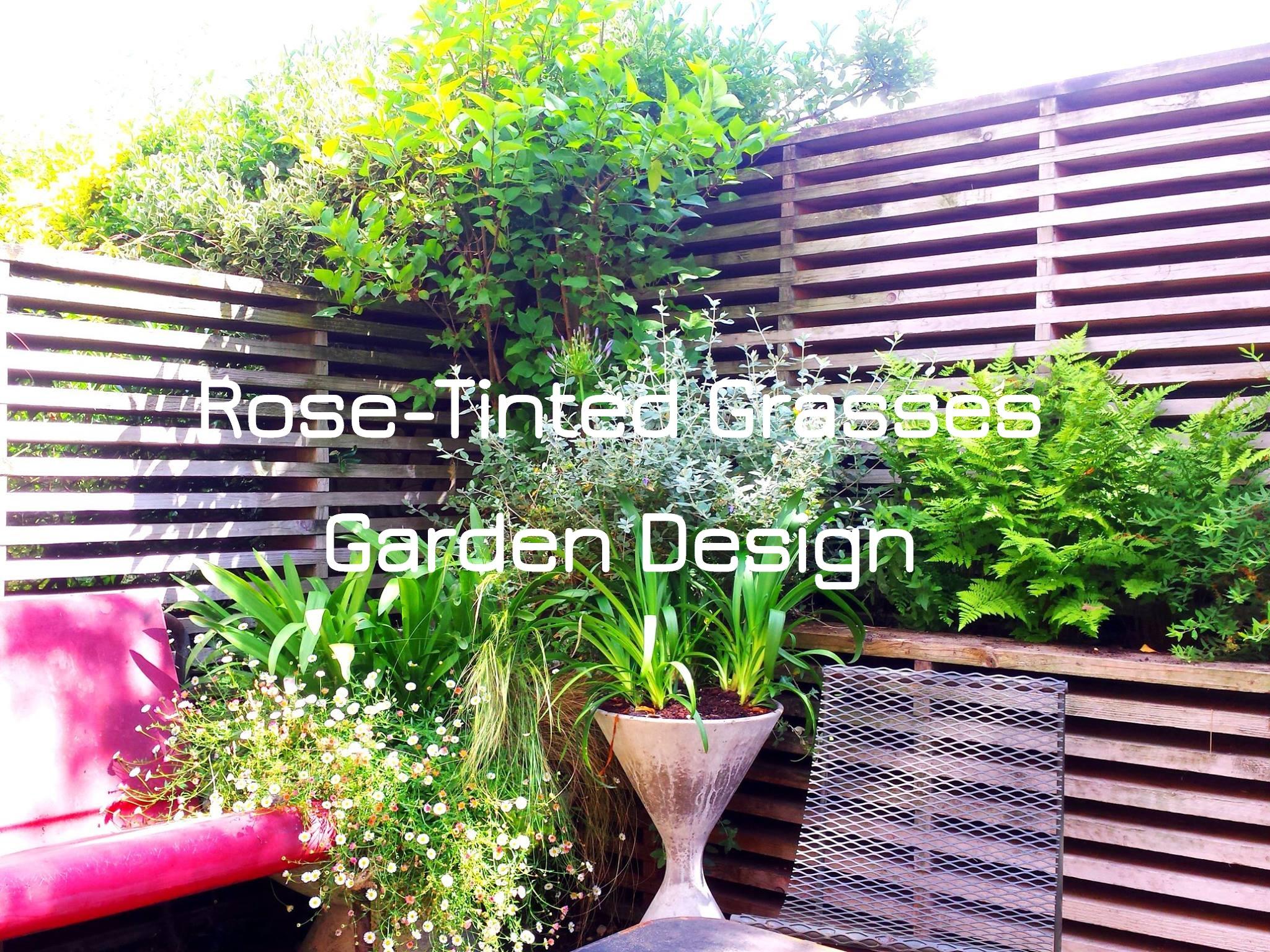 Saul Abbott Garden Design