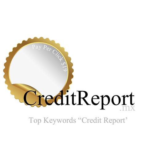 CreditReport.mx