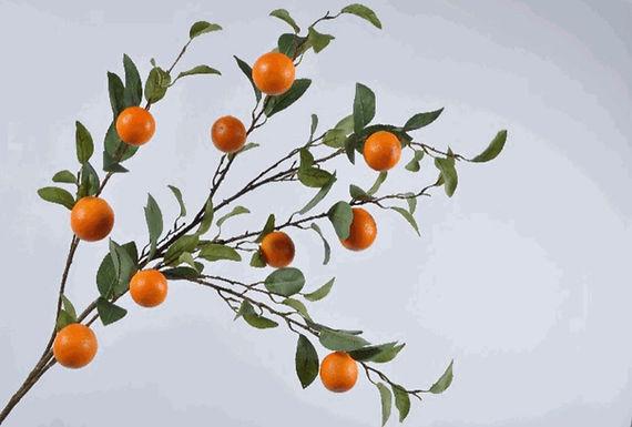 Sinaasappeltak XXL