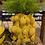 Thumbnail: Vaas Jackfruit Large