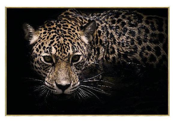 Sneaky cheetah Glasspainting