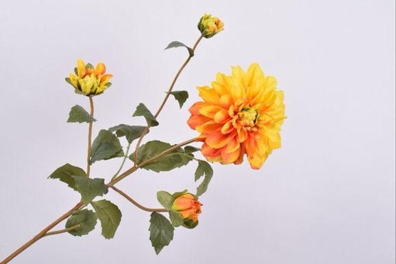 Dahlia Tak Geel Oranje