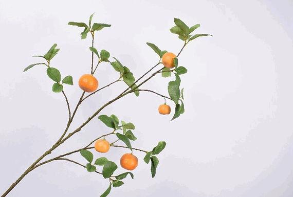 Sinaasappeltak L