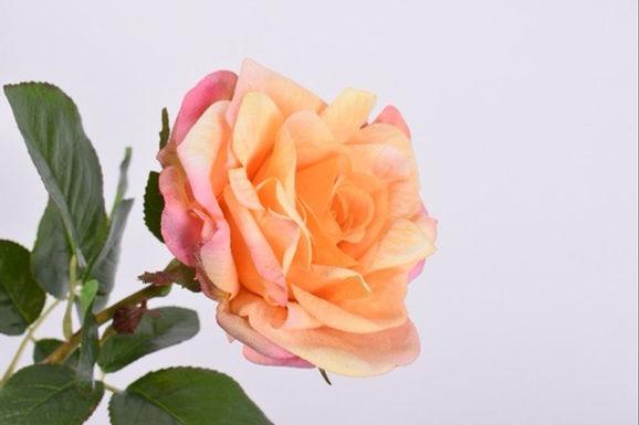 Roos Steel Oranje Roze