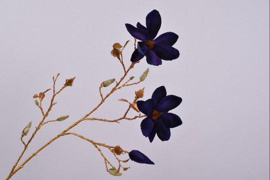 Magnolia Tak Goud blauw