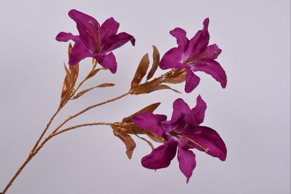 Lelie Steel Goud Lavendel