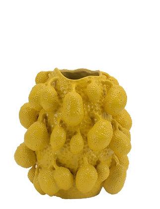 Vaas Jackfruit Large