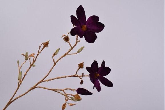 Magnolia Tak Goud Paars