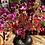 Thumbnail: 7 Mouth vase XL Black