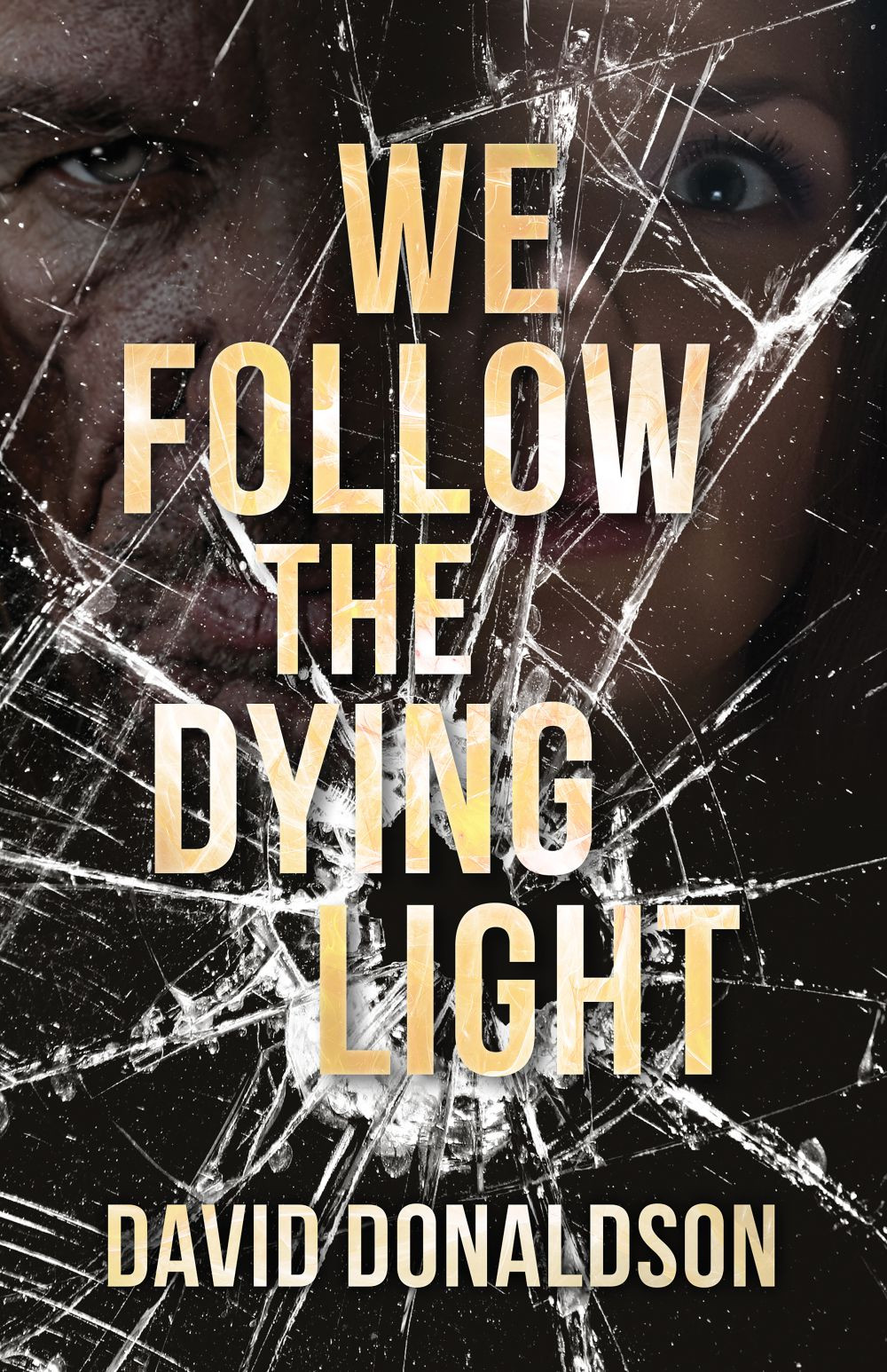 We Follow the Dying Light by David Donaldson | Geeky Goodies Interview
