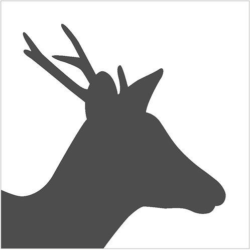 deer (beginner)