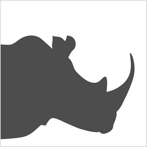 rhinoceros (beginner)