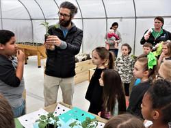 18-19 greenhouse