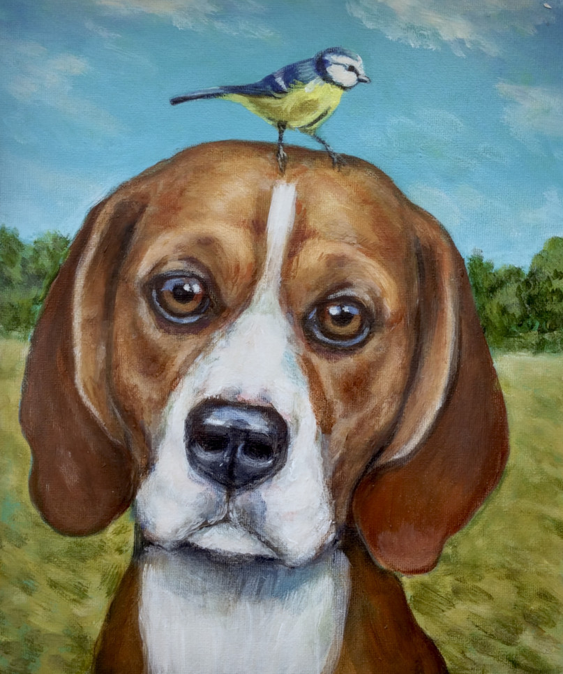 The Beagle and Blue Tit