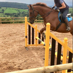 May Hill Farm and Livery, Jumping