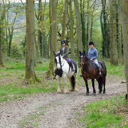 May Hill Farm and Livery, Hacking through woods