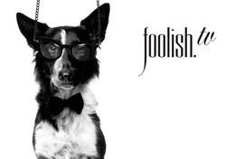 FOOLISH TV