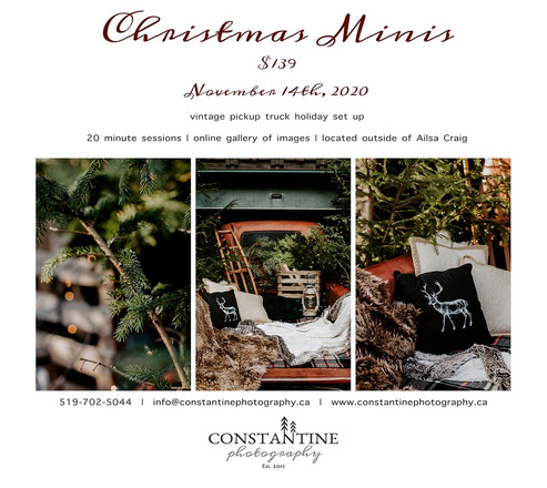 Christmas Minis - SOLD OUT