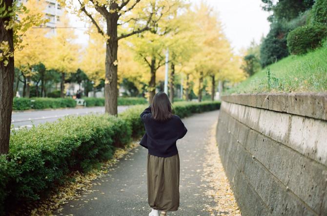 Colours of Autumn- Tokyo
