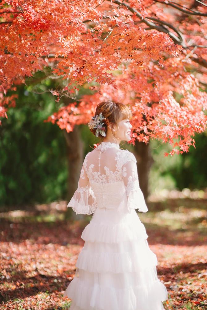 Japan- Pre Wedding Tour 2019