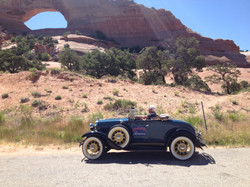 Williams arch in roadster