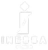 INS-logo-white_png.png