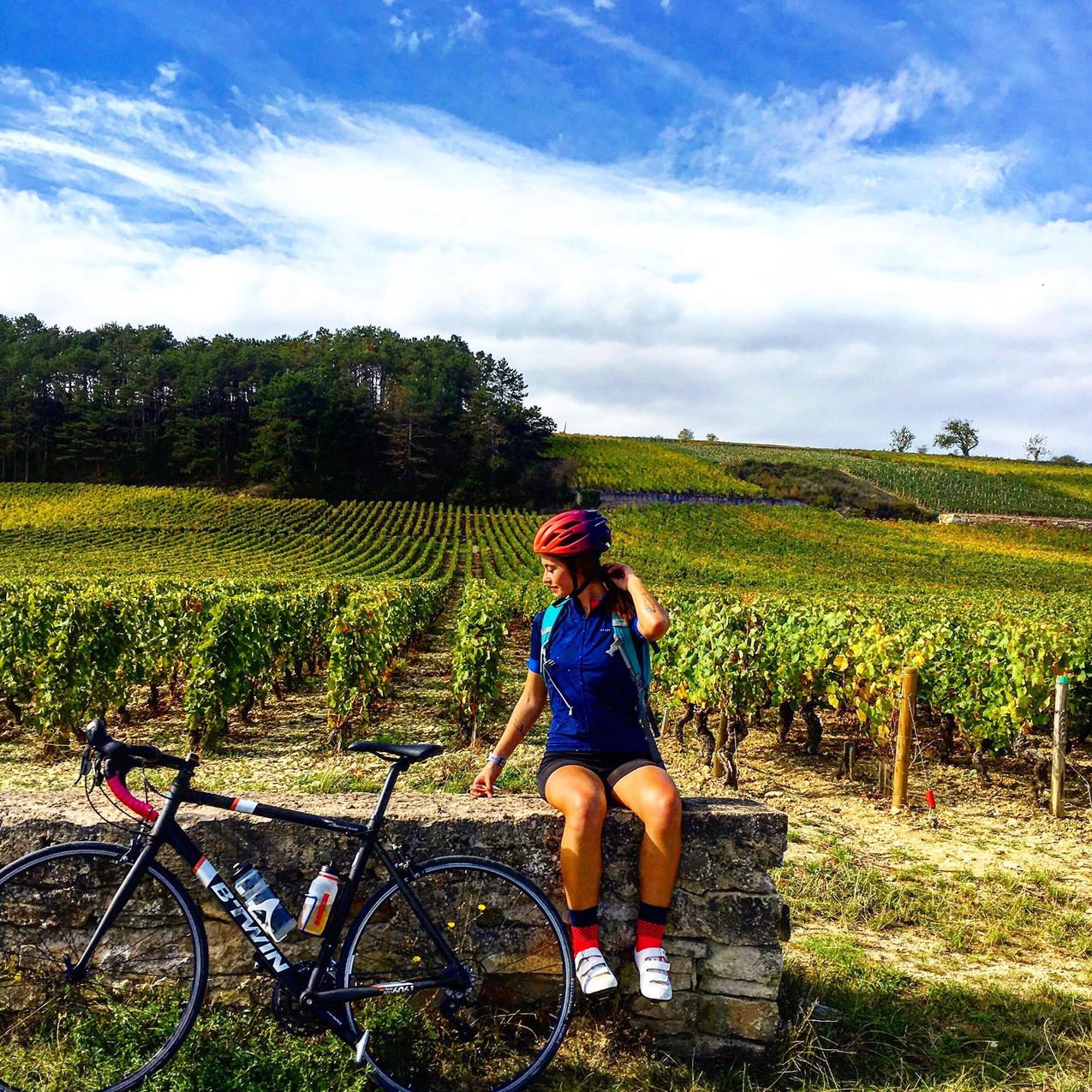 vélo bourgogne voie des vignes