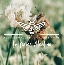 Alcaline logo
