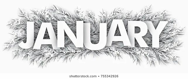 spruce-froze.webp