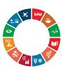 SDG challenge.png
