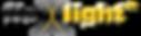 fleXlight logo.png