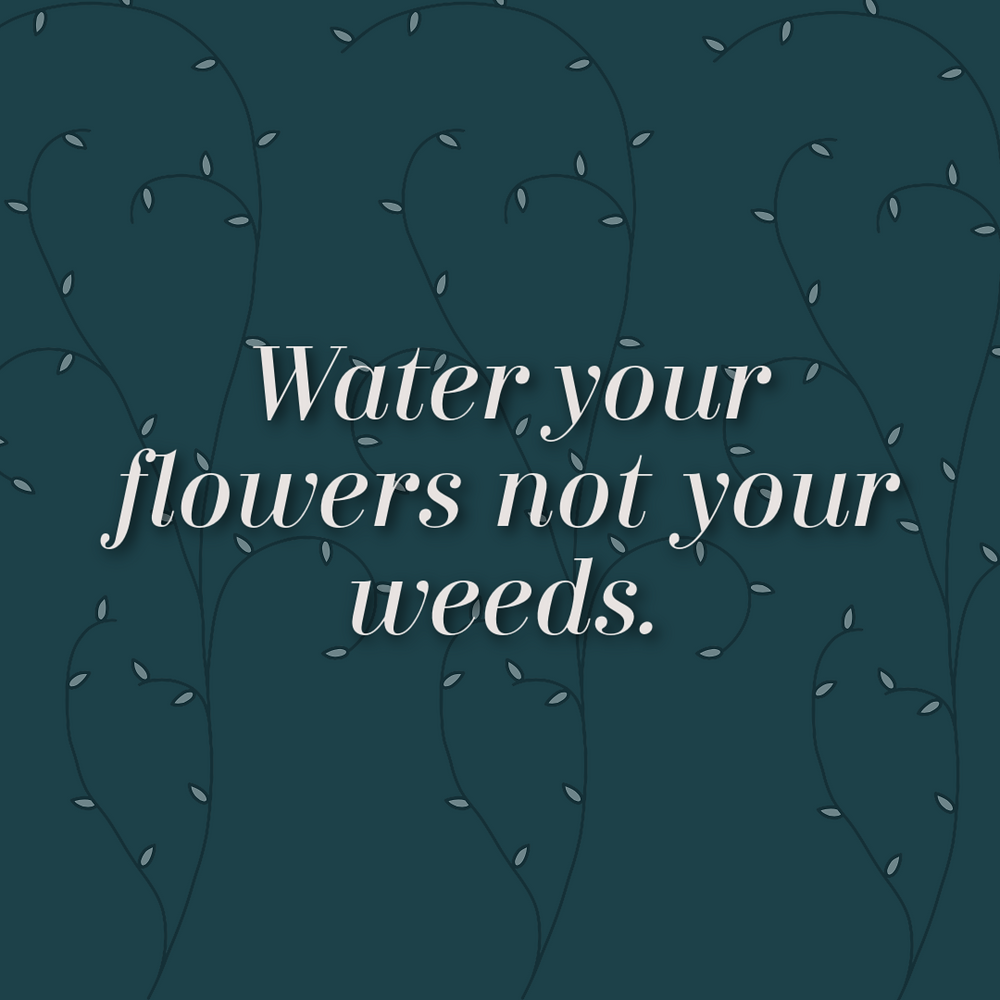 water your flowers not your weeds; where your focus goes your energy flows; it is all there all the time -- good and bad.