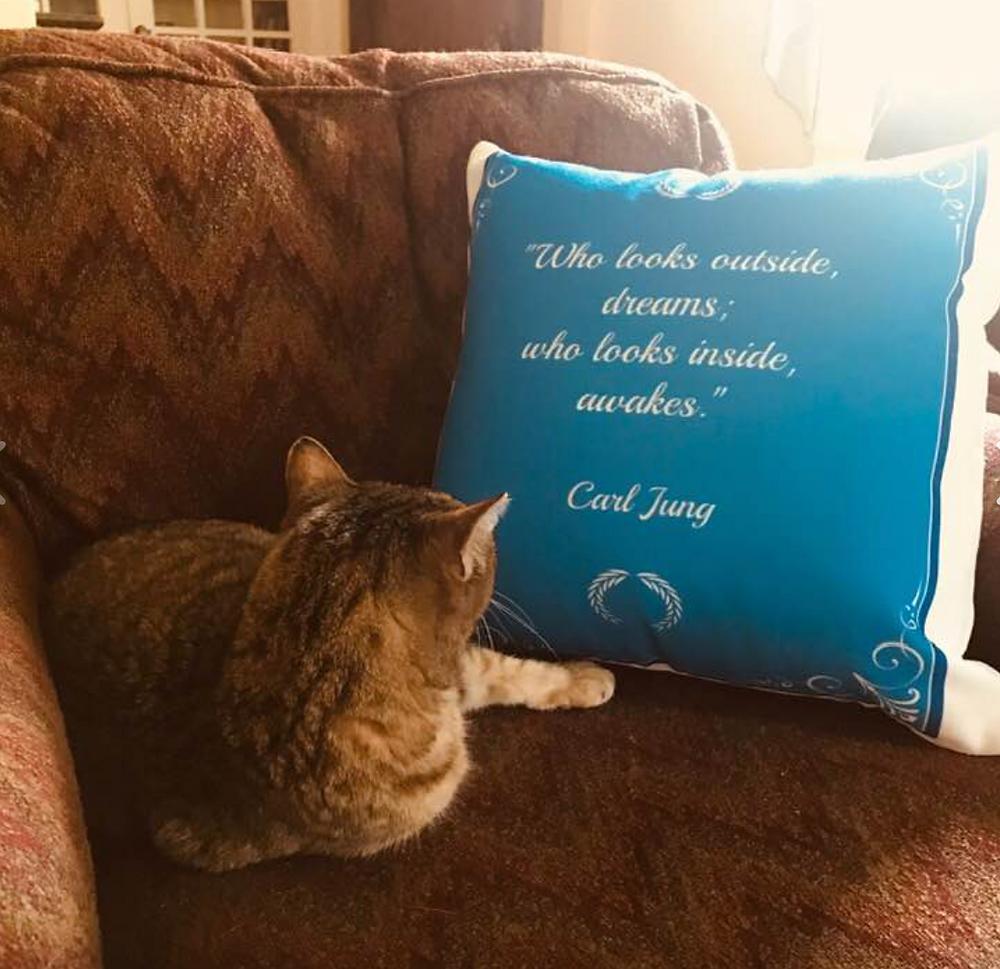 Jungian cat